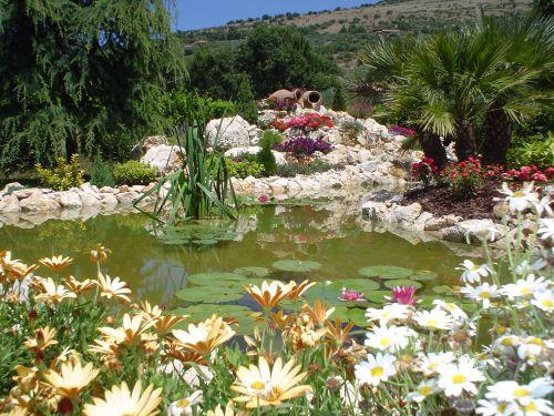 505days foto for Giardini rocciosi progettazione